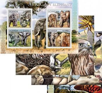 30-03-2012-fauna-of-africa-ugn12101a-ugn12110b.jpg