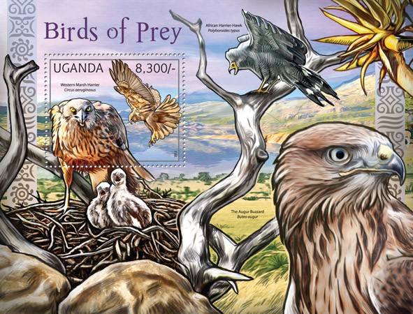 Birds of Prey, (Western Marsh Harrier). - Issue of Uganda postage stamps