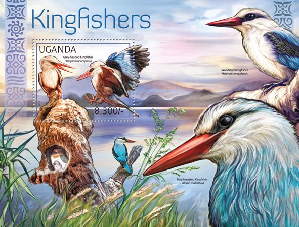 Kingfishers - Issue of Uganda postage stamps