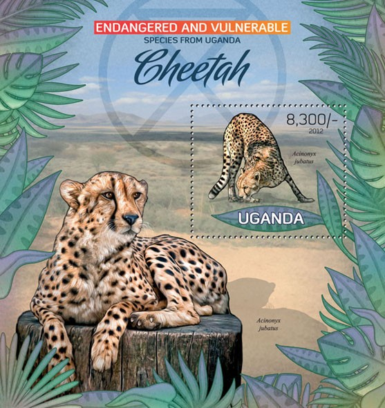 Cheetah - Issue of Uganda postage stamps