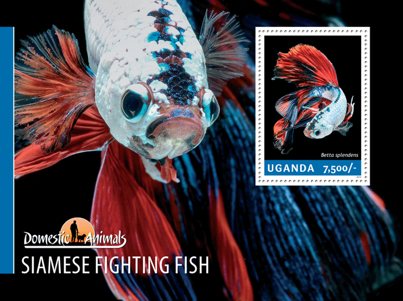 Siamese fighting fish - Issue of Uganda postage stamps