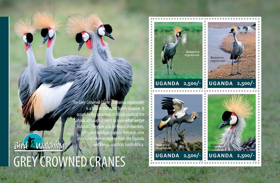 Grey Crowned Cranes - Issue of Uganda postage stamps