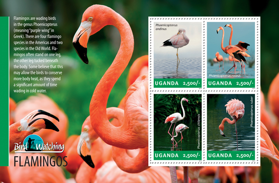 Flamingos - Issue of Uganda postage stamps