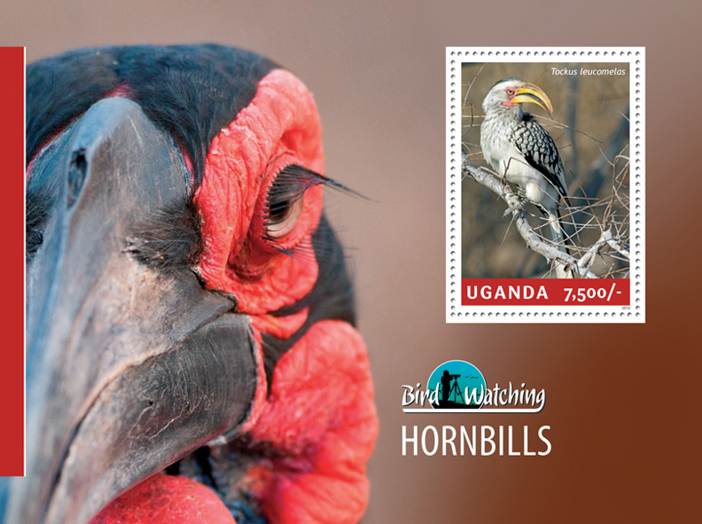 Hornbills - Issue of Uganda postage stamps